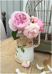 Engelska rosor från trädgården