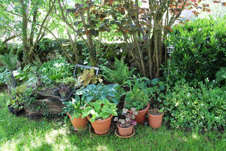 le blog de mon doubs jardin ForLe Jardin Manichanh