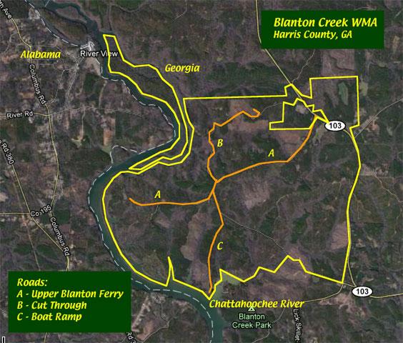 Anybody Seen My Focus Blanton Creek Wildlife Management