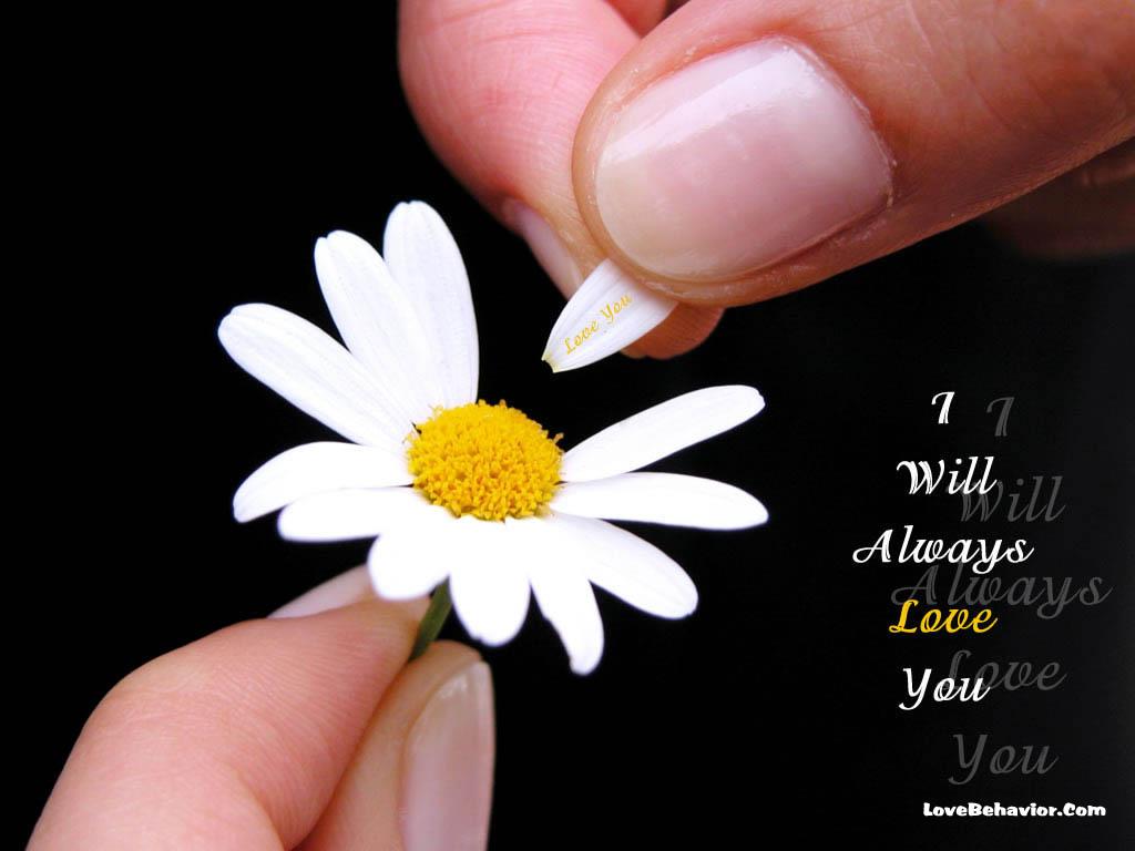 http://4.bp.blogspot.com/-FYmqpp3cADQ/TbxGABkNdkI/AAAAAAAAEGw/BISD6Kydlhg/s1600/always-love-you.jpg