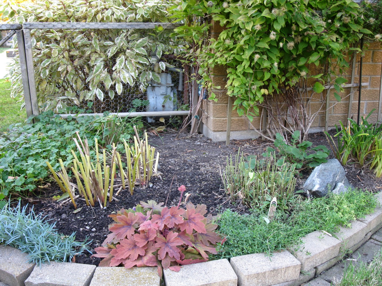 White swan homes and gardens check list for preparing your gardens for old man winter - Prepare garden winter ...