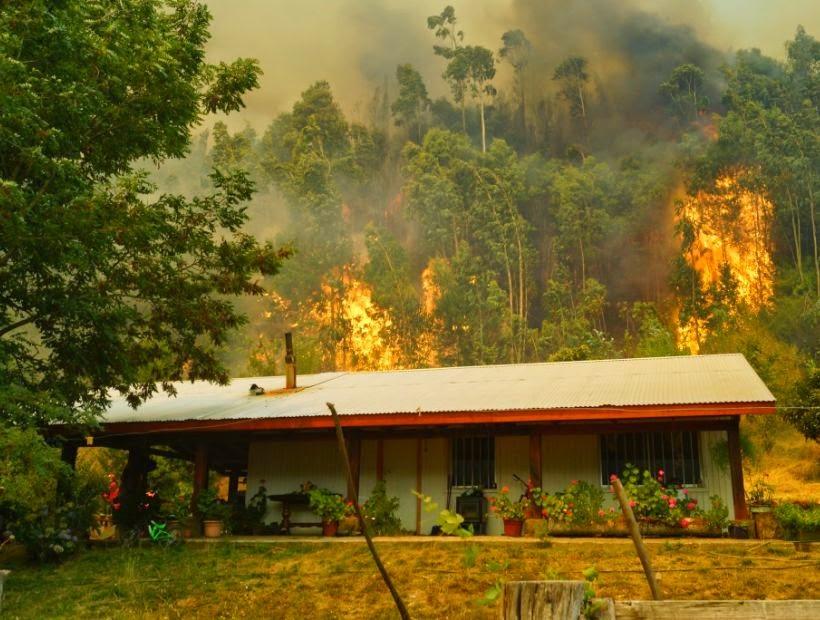 ALERTA ROJA EN CHILE POR AL MENOS 20 INCENDIOS FORESTALES ACTIVOS, 13 DE FEBRERO 2015