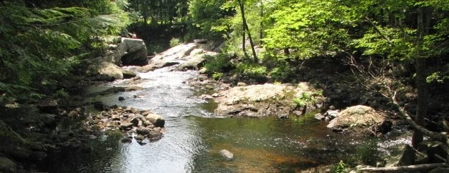 Local Stream- The Isinglass River