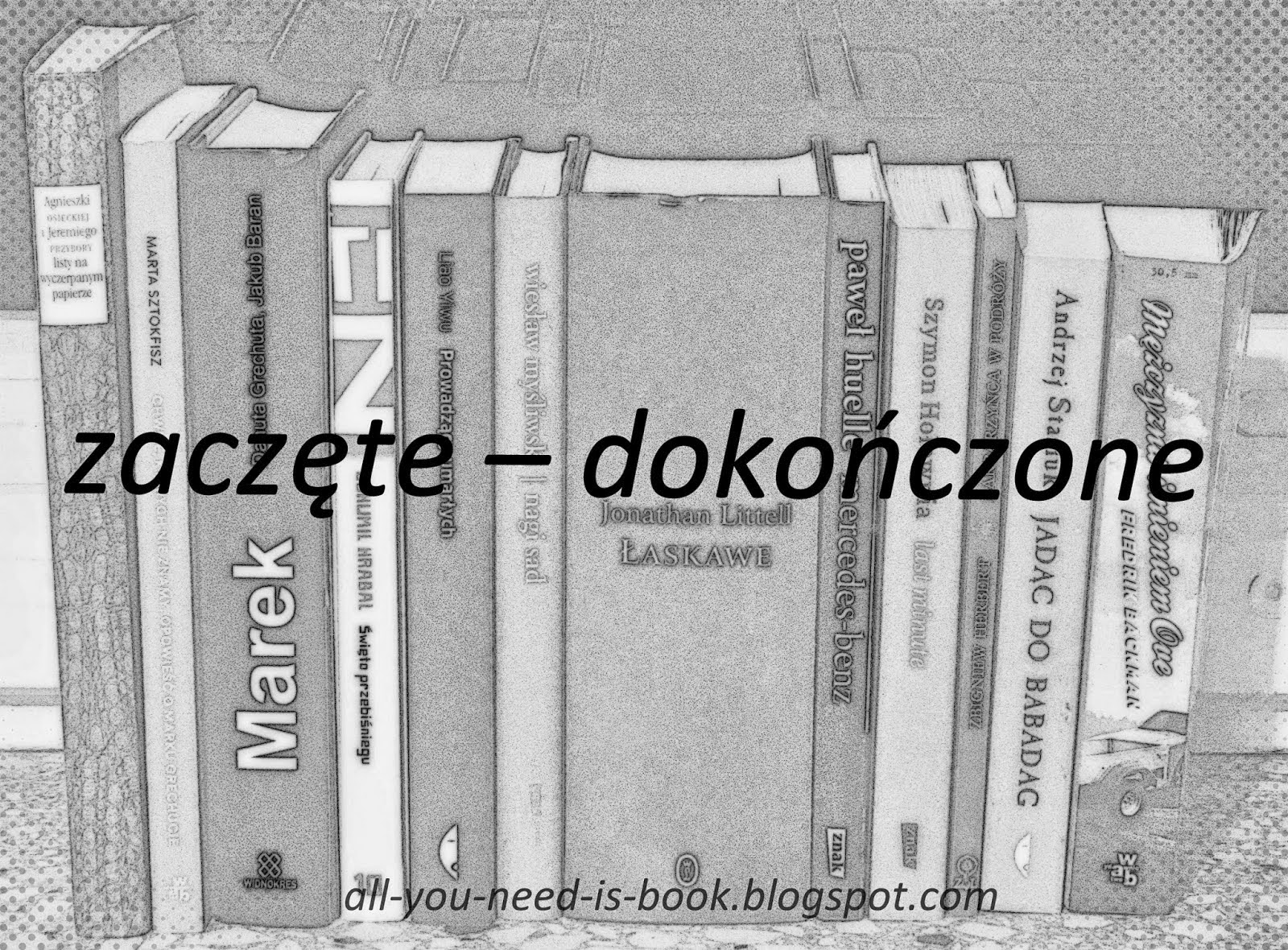 http://all-you-need-is-book.blogspot.com/search/label/zacz%C4%99te%20-%20doko%C5%84czone