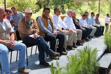 http://www.quadratin.com.mx/economia/Se-realizaran-trabajos-de-restauracion-forestal-en-Aranza-y-Quinceo/