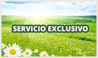 http://www.funerariamartinezperu.com/2014/12/servicio-funerario-exclusivo.html