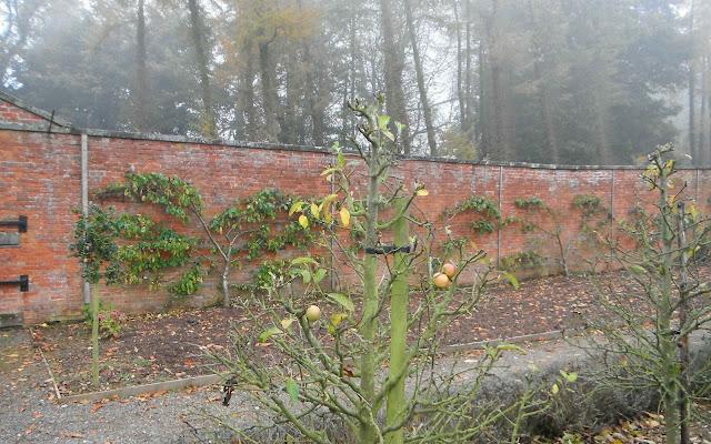 Sugnall Walled Kitchen Garden