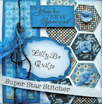 I'm Proud to be   a Super Star    Stitcher