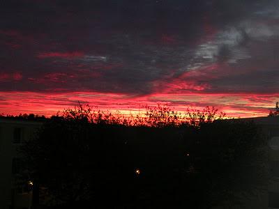 solnedgång. foto: Reb Dutius