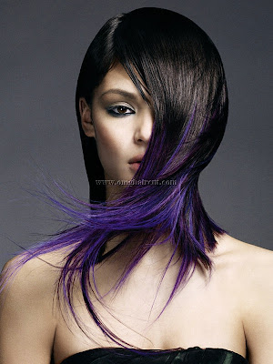 schwarzkopfhair color 5 Bold Hair Highlights Ideas