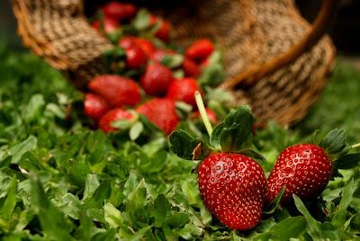 strawberry ~