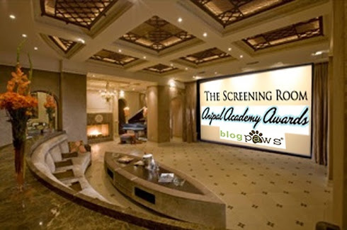 Photo & Video Screening Room: Click on image to view nominated photos & videos