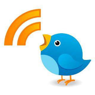 Оригинальные счетчики RSS и Twitter с обновляемой статистикой