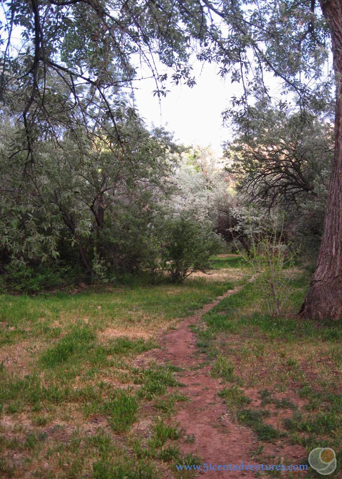 51 Cent Adventures Rons Pack Creek Campground Moab Utah