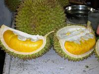 Buah Durian Dan Manfaatnya Bagi Kesehatan