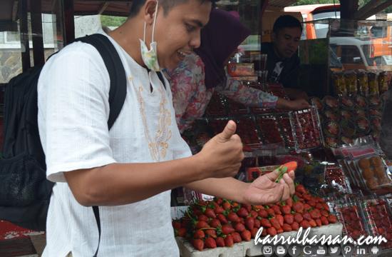 Strawberry Kawah Putih Ciwidey