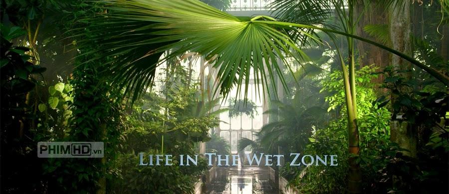 Phim Vương Quốc Thực Vật Phần 3: Sống Sót VietSub HD | Kingdom Of Plants 3D Survival
