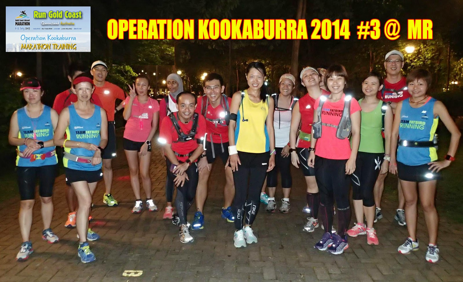 Gold Coast Marathon: Kookaburra Nestles In