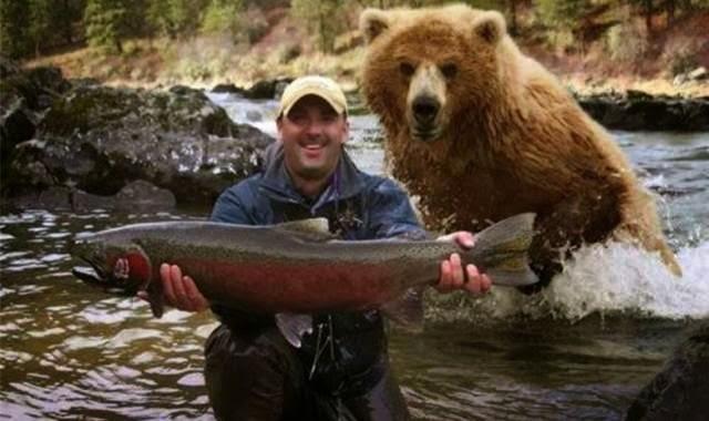 beruang mengintai dibelakang