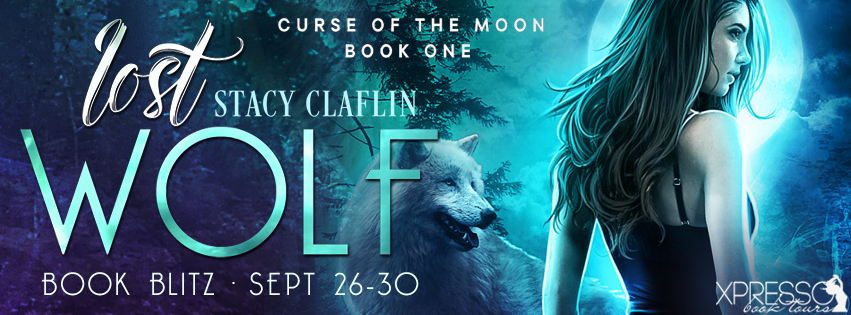 Lost Wolf by Stacy Claflin
