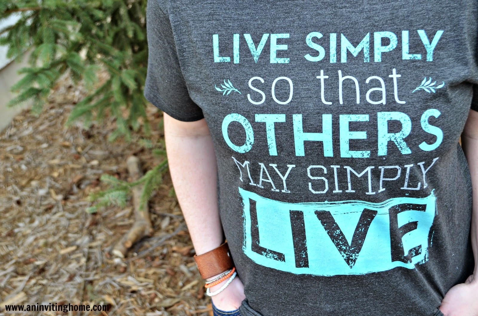 live simply so that others may simply live