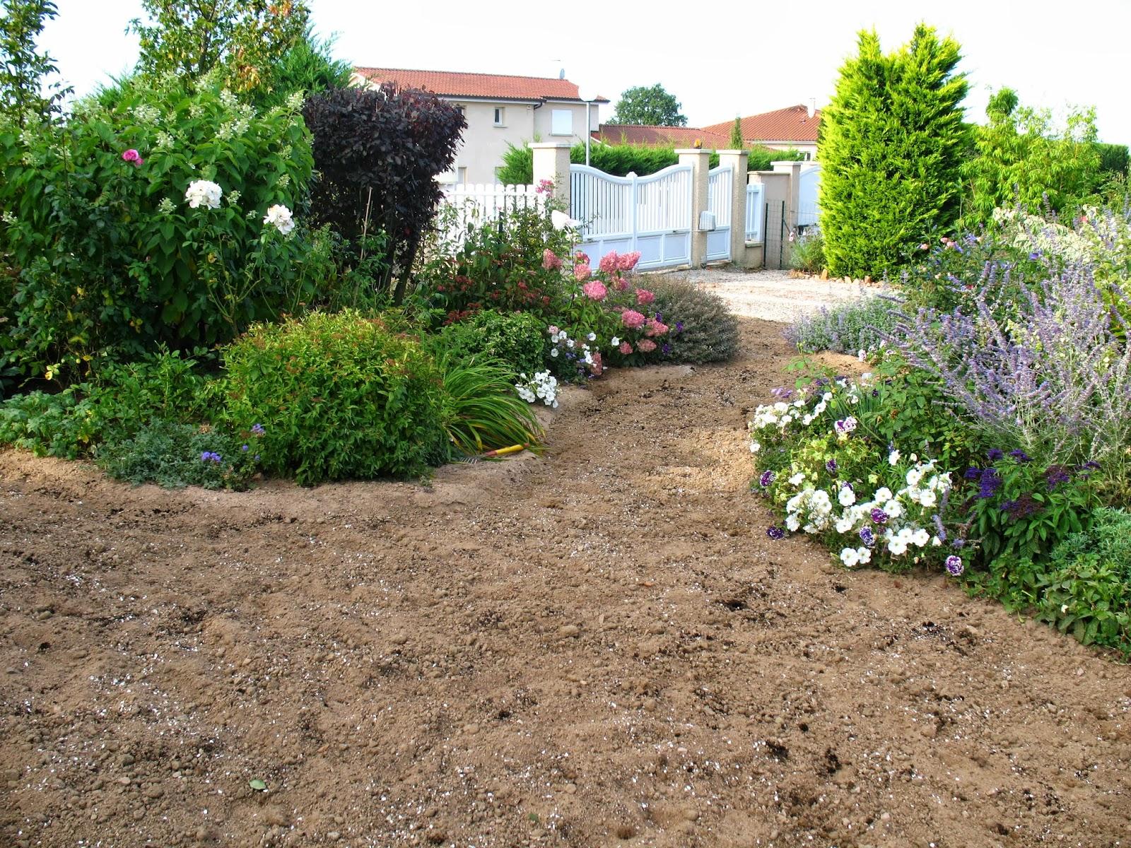 roses du jardin ch neland l 39 volution d 39 un semis de gazon. Black Bedroom Furniture Sets. Home Design Ideas
