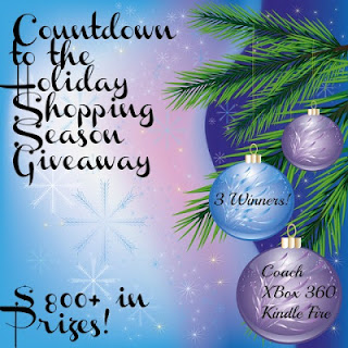 countdown to the holiday shopping season giveaway maegal