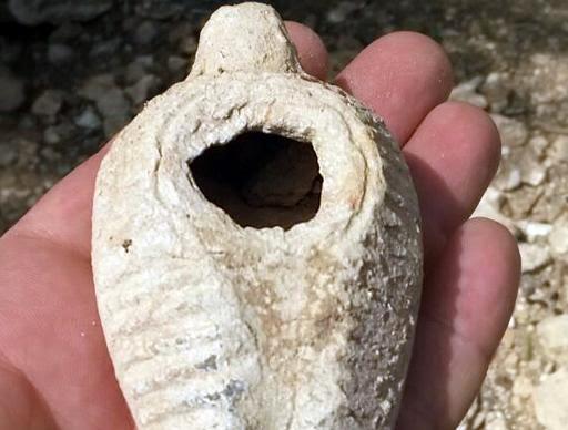Ouriço ajuda a encontrar lâmpada em Israel