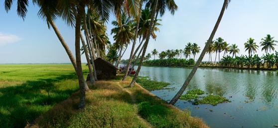 Www Indiaonsale In Kumarakom North Kerala Backwater Tour