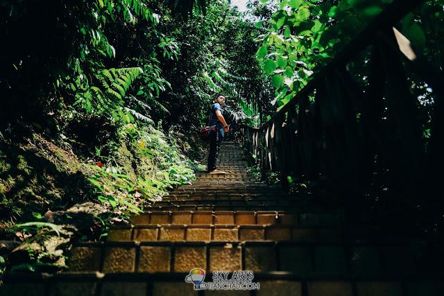 Stairs uphill to Bukit Nanas Bamboo Walk