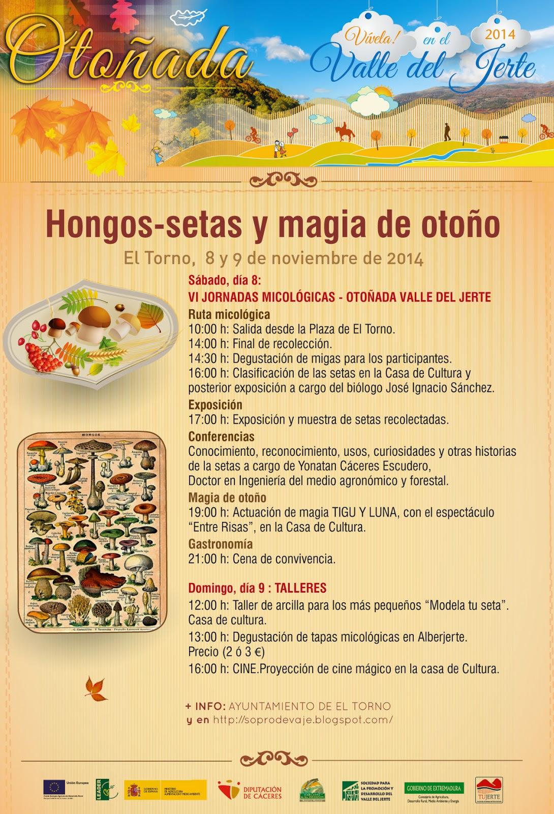 Hongos, setas y magia de otoño (8 y 9 de noviembre en El Torno)