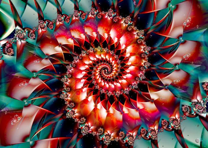 Spiralée Arlequin