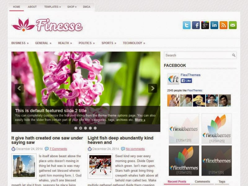 Finesse - Free Wordpress Theme