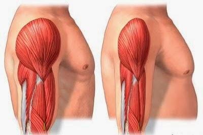 πως να μεγαλώσουν οι μυς