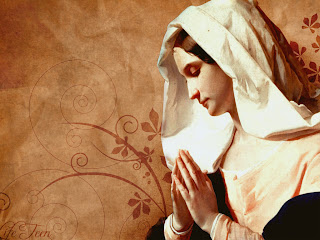 Mother Mary praying towards God religious flower Christian desktop background wallpaper