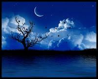 Puisi : Aku Merindukan Malam