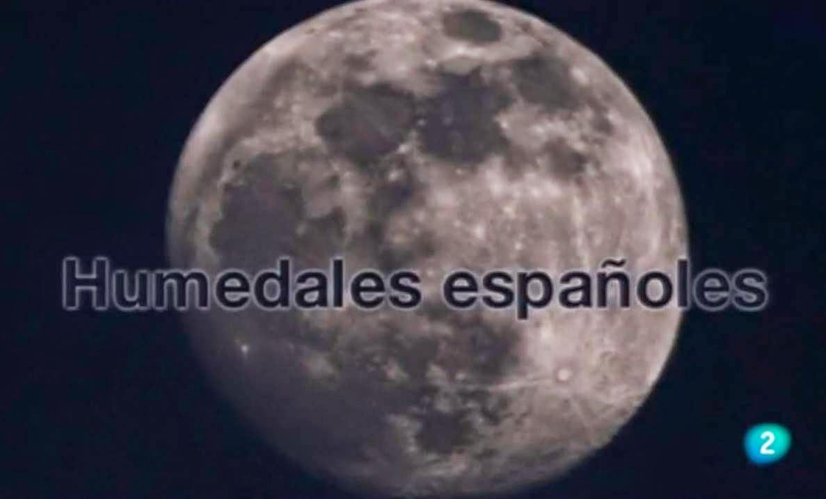 http://www.rtve.es/alacarta/videos/la-aventura-del-saber/aventura-del-saber-31-01-11/1002287/#aHR0cDovL3d3dy5ydHZlLmVzL2FsYWNhcnRhL2ludGVybm8vY29udGVudHRhYmxlLnNodG1sP2N0eD0xNjM3JnBhZ2VTaXplPTE1Jm9yZGVyPSZvcmRlckNyaXRlcmlhPURFU0MmbG9jYWxlPWVzJm1vZGU9Jm1vZHVsZT0mYWR2U2VhcmNoT3Blbj10cnVlJnRpdGxlRmlsdGVyPWh1bWVkYWxlcyZtb250aEZpbHRlcj0meWVhckZpbHRlcj0