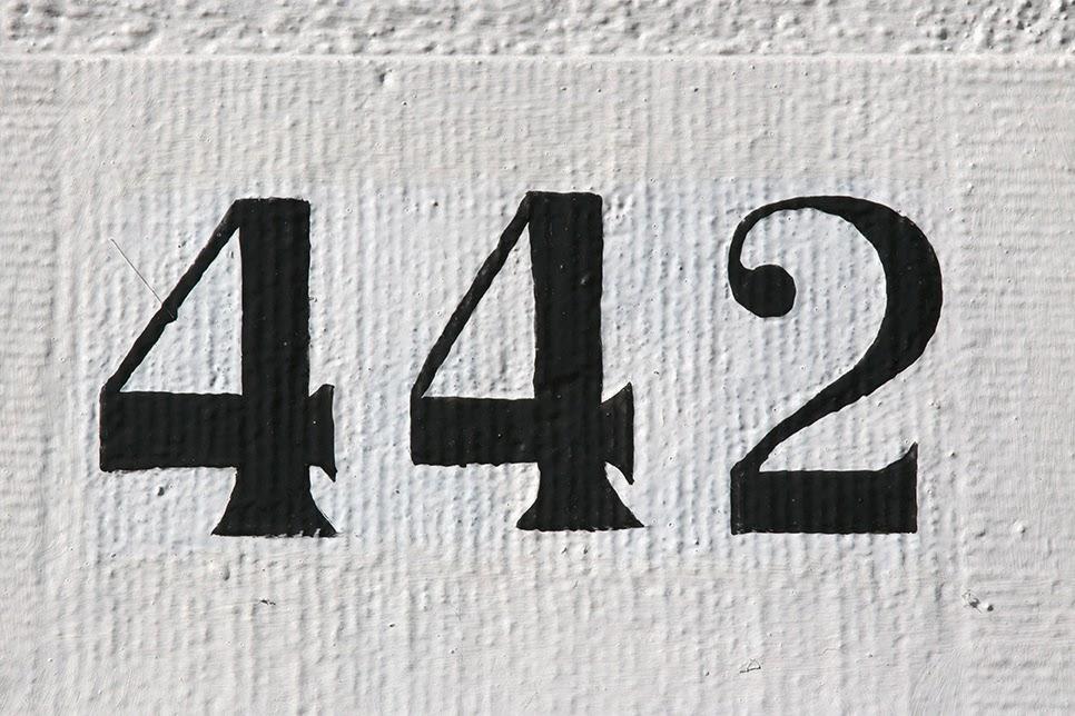 street number 442