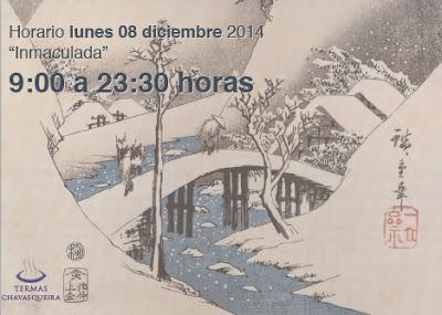 Termas Chavasqueira, horario 8 diciembre 2014