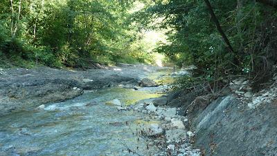 речка Бешенка перед началом каньона