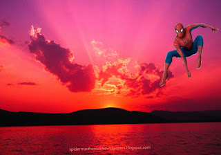 Spiderman Wallpaper Super Hero Flying Jumping in Sunset Landscape background