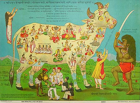 Why do Hindus Worship Cows - Kamdhenu Kali