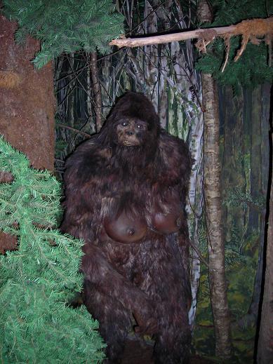 female bigfoot