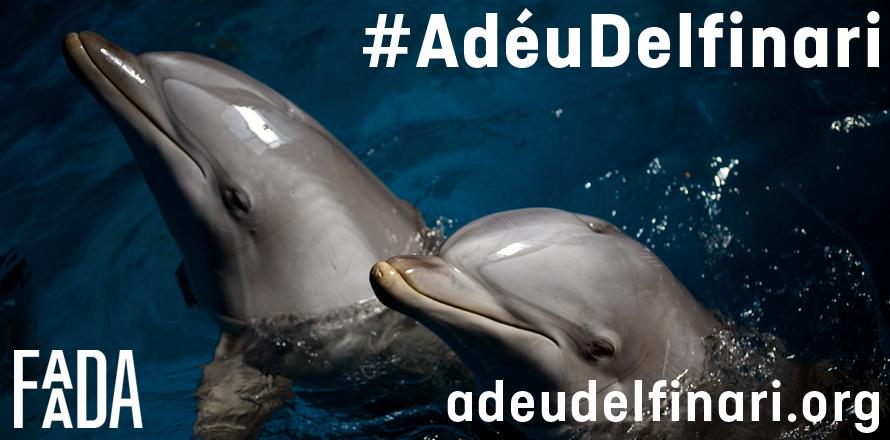 SOS voor dolfijnen