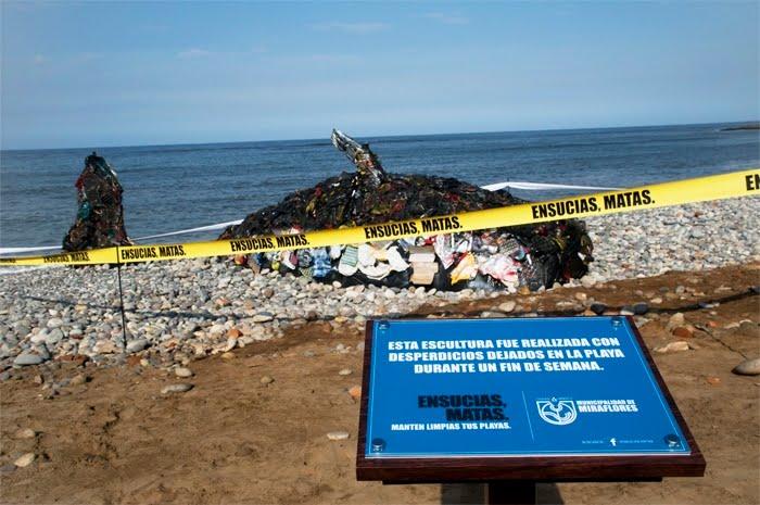 En vidéo: nos déchets tuent les baleines