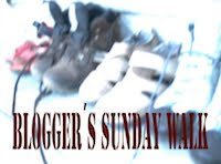 Blogger's Sunday Walk