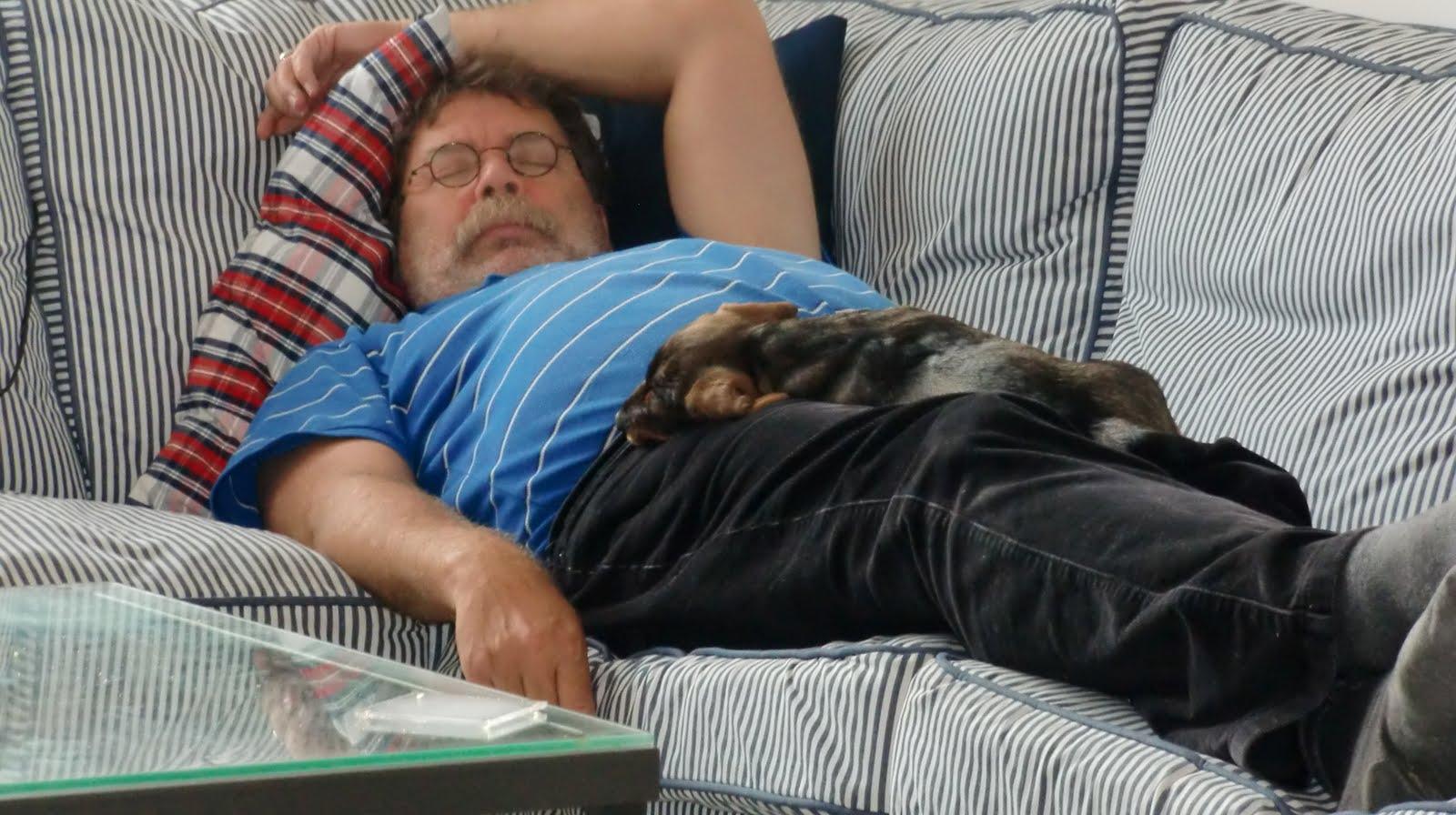 Tati de teckel de eerste dagen for Baby op zij slapen kussen