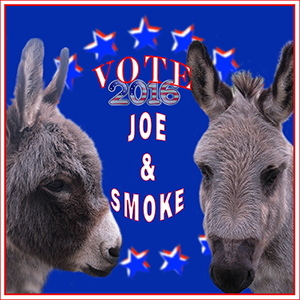 Vote for Smoky and Joe
