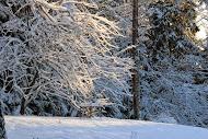 On lunta tulvillaan