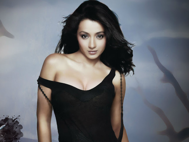 Tamil and Telugu Actress - Trisha Krishnan
